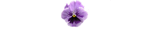 fancy pansy logo
